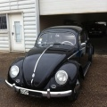 VW Coccinelle Ovale 1956